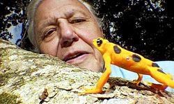 El ecologista Sir David Attenborough