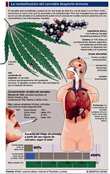 efectos marihuana cannabis