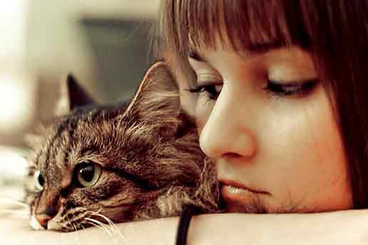 La intimidad es para los seres humanos y no para los animales
